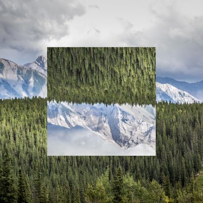 Square in Nature